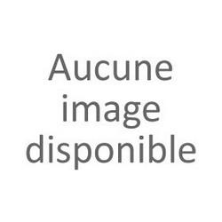 Pack de 4 Cartouche Jet d'encre N°18 PAQUERETTE (1 Noir + 1 Cyan + 1 Magenta + 1 Jaune) EPSON T1806 (4 * 15,1 ml)